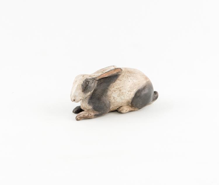 Coniglio | Rabbit