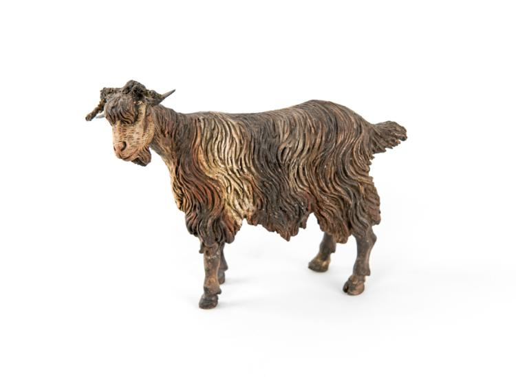 Capra in piedi | Standing goat