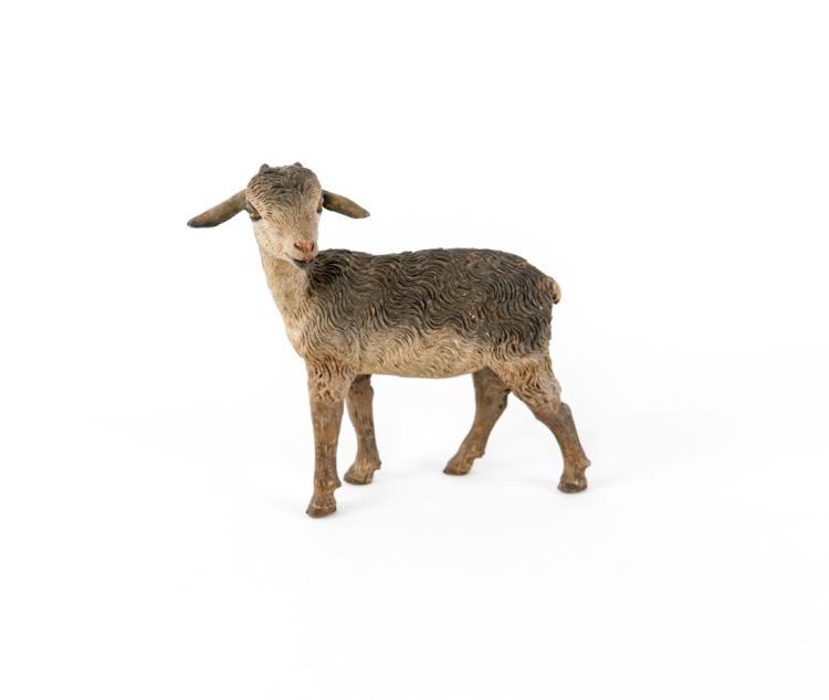 Un agnellino | A lamb
