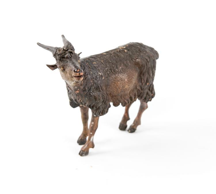 Capretta nera | Black goat