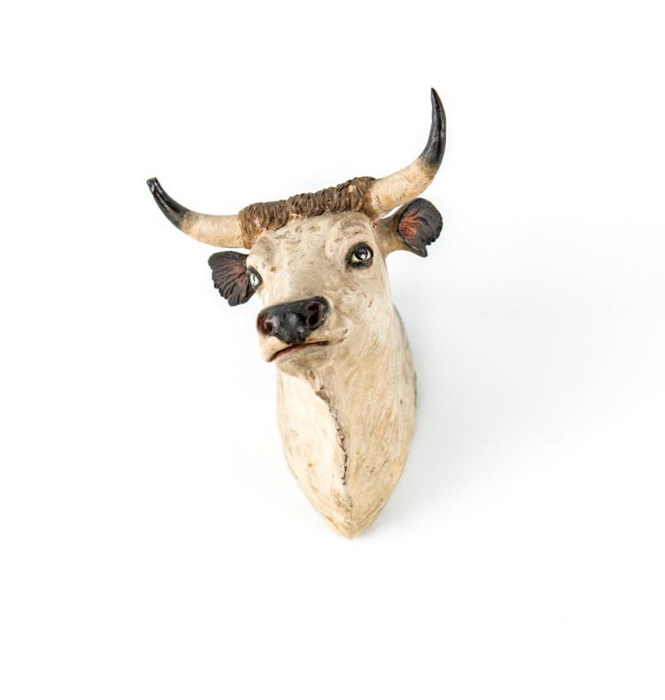 Testa di mucca | Cow head