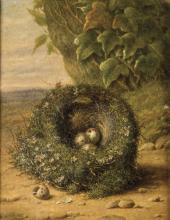 Pittore del XIX secolo | Nido | Nest