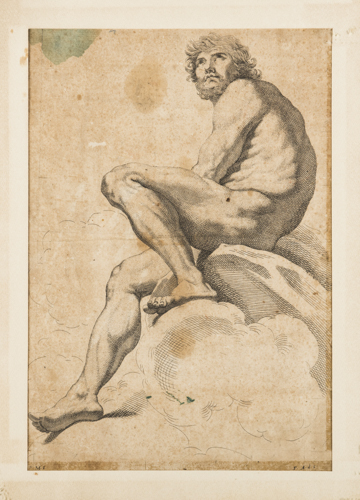 | Antica stampa con Studio di figura maschile |