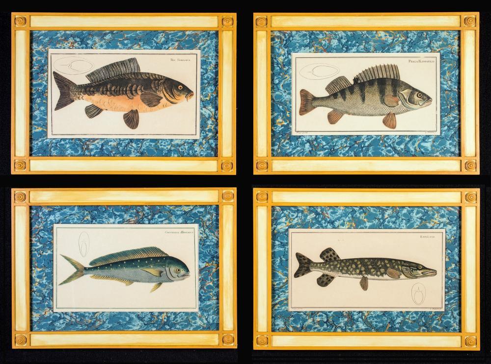 FOUR COLORFUL FISH PRINTS