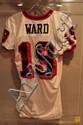 Hines Ward Jersey #19- Game Worn