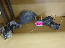 (6) PIECES OF SLATE WITH FOSSIL FERNS HIGHLIGHTED WITH WHITE PAINT