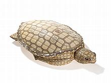 Rare, Museum-Quality Ivory Turtle, late Qing/Republic