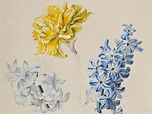 Franz Xaver Gruber, Watercolor 'Hyacinths & Clove', c. 1840