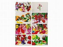 Marc Quinn, Winter Garden, Series of 8 Pigment Prints, 2004