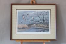 "Framed & Matted Print by Maynard Reece, Depicting Mallards Landing On Pond, Print # 1312/1500, Signed & Dated 1969, 23"" x 28.5"""