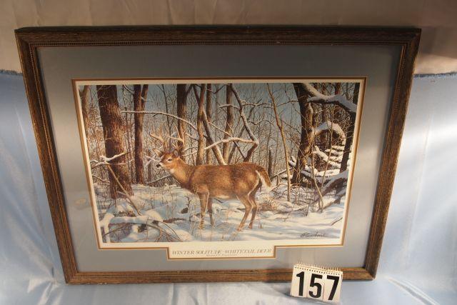 Framed & Matted Whitetail Deer Print by Richard W. Plasschaert, #1055/2200 Signed & Numbered