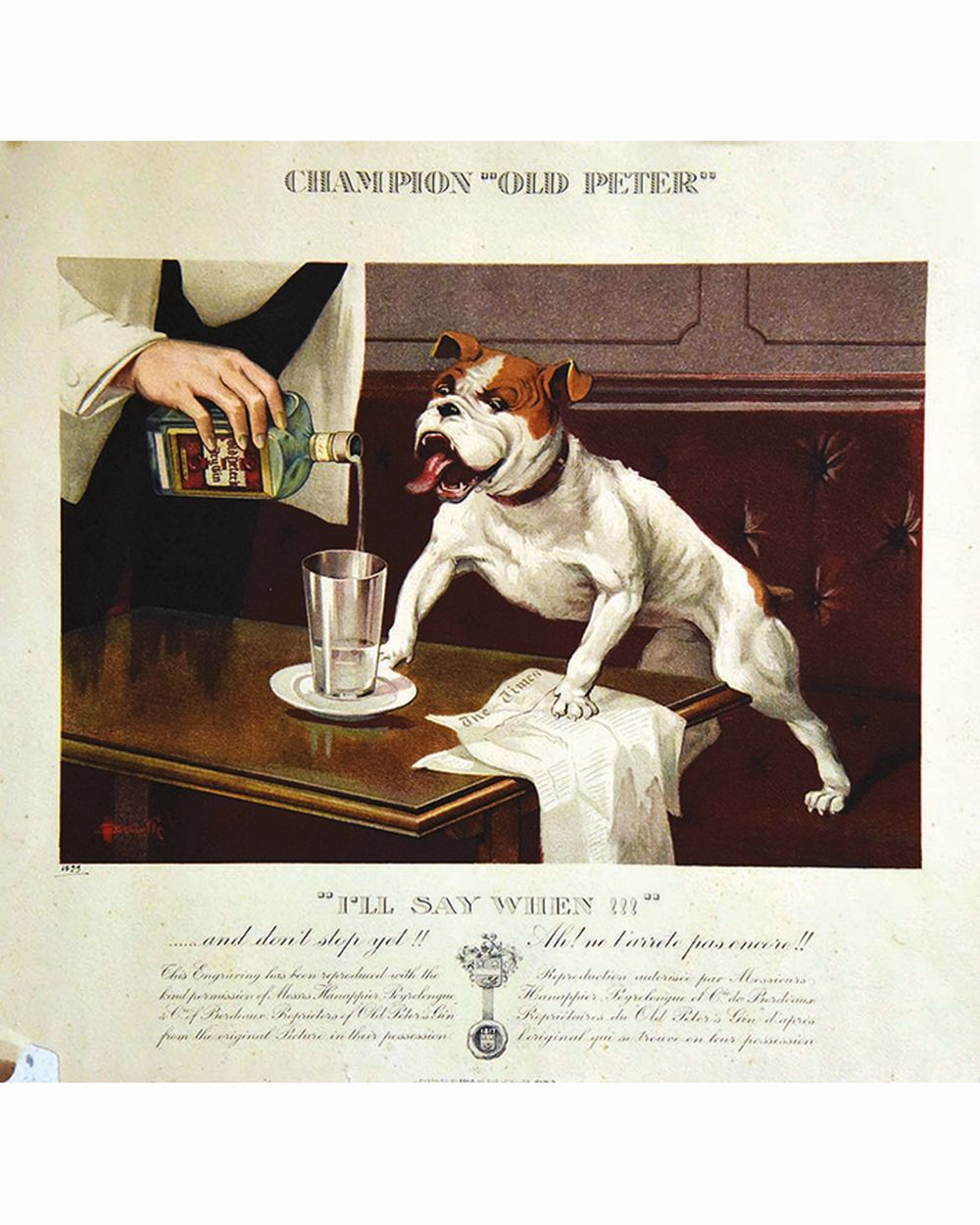 AUZOLLE - Champion Old Peter     1899
