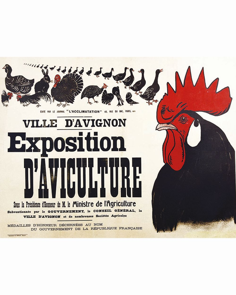 Exposition D'Aviculture Ville d'Avignon     vers 1900  Avignon (Vaucluse)