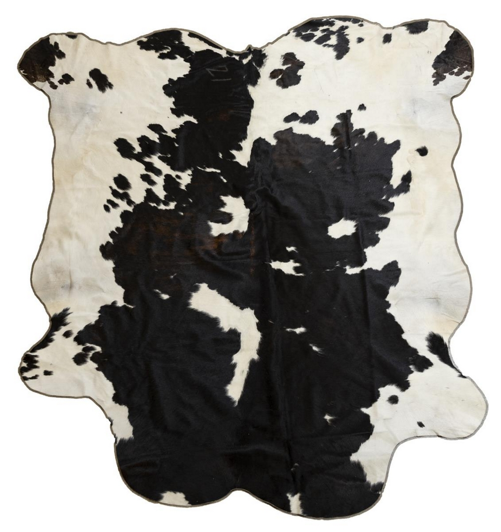 "LARGE TANNED BROWN & WHITE COW HIDE, 98""L X 86""W"