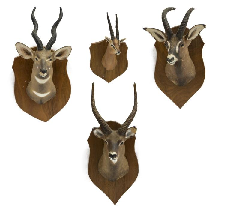 (4)LOUIS PAUL JONAS STUDIOS TROPHY MOUNTS, GAZELLE