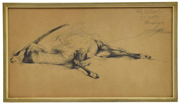 WILHELM KUHNERT (1865-1926) NATURALIST DRAWING
