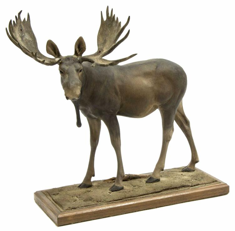 LOUIS PAUL JONAS STUDIOS MOOSE