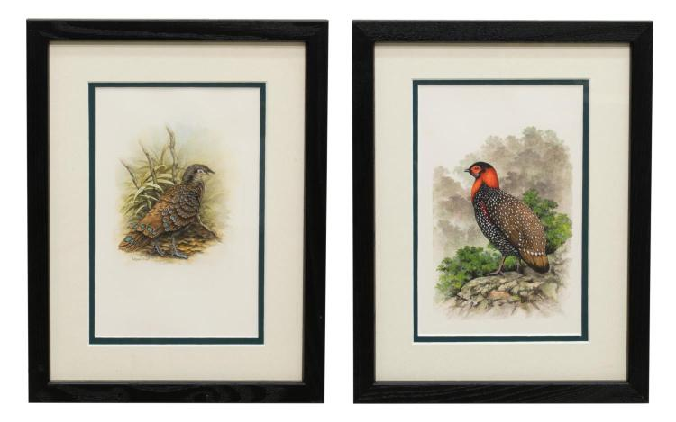 (2) FRAMED & SIGNED W. OLIVER (D.2014) WATERCOLORS