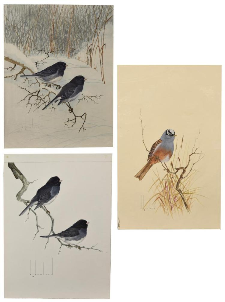 (3) D. HOWLAND (NY, 1920-1999) WATERCOLOR PAINTING