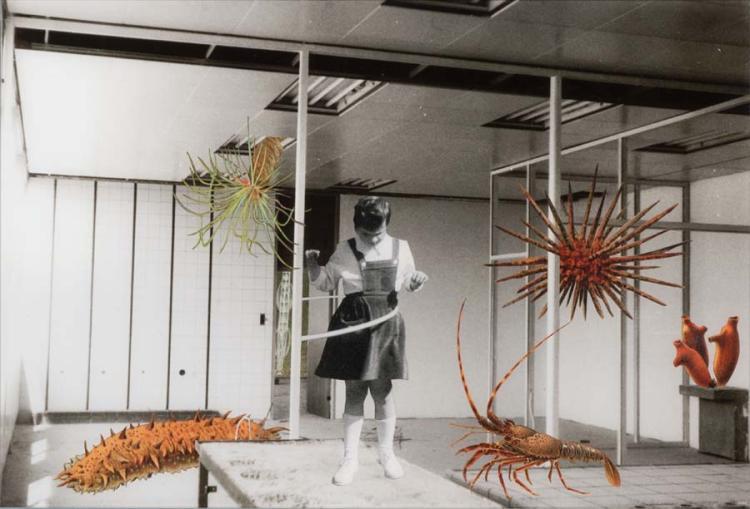Thomas Draschan *(1967 Linz)   Tristesse Royal I, 2010
