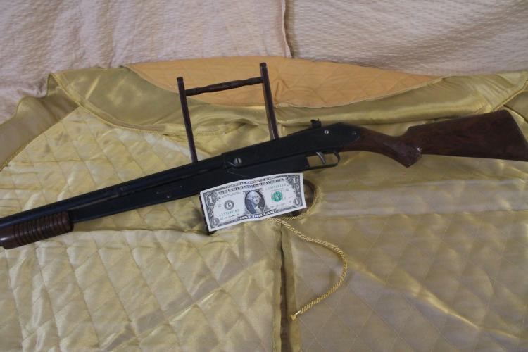 Daisy Pump Gun