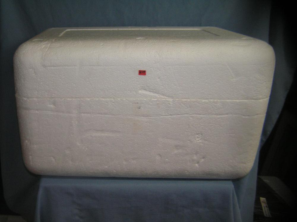 Lot 249: LARGE STYROFOAM BEACH, PICNIC OR SHIPPING COOLER