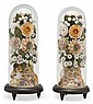 Pair of flower displays made of seashells in glass bell jars, late 19th century