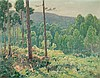 Joaquim Vancells Barcelona 1866 - 1942 Forest, Joaquim Vancells, Click for value