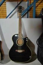 Quintus 6 string acoustic guitar in ebony