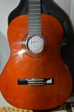 Ashton acoustic guitar complete with soft case