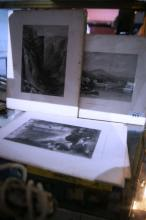 Collection of antique etchings,