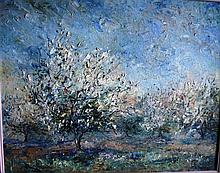 Doreen Gadsby ,oil on canvas board, 'Almond trees,