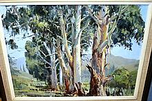 Peter Williams, oil on board, gumtrees, signed,