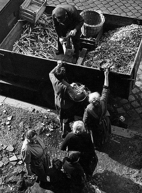 Weigl, Werner R.: Brennholz für Kartoffelschalen