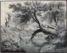Winterlin, Anton: Waldweiher mit umgestürztem Baum