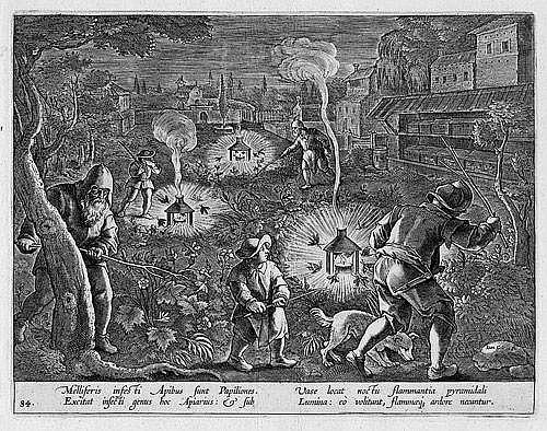 Galle, Cornelis I: Jagd auf Nachtfalter