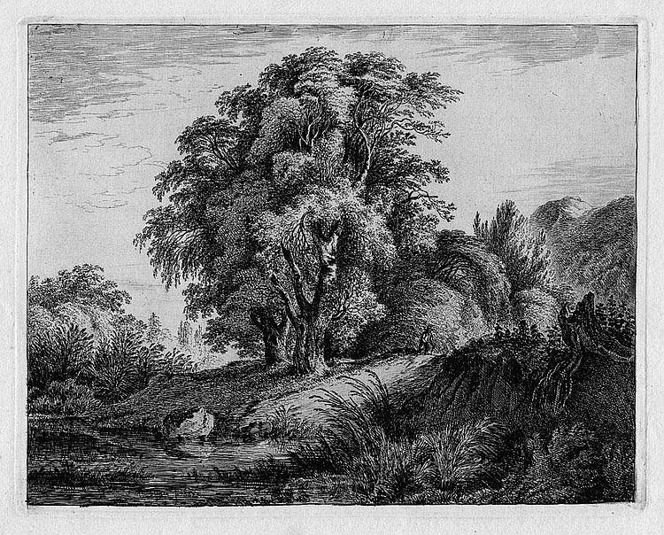 Rechberger, Franz: Zwei Landschaften mit Felsen