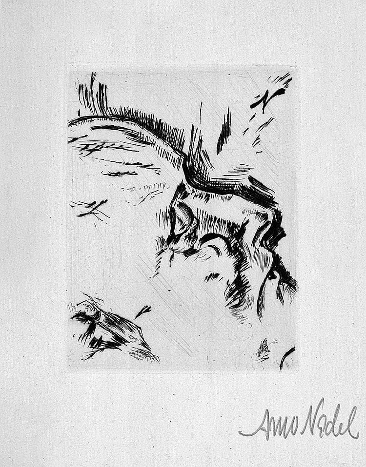 Nadel, Arno: Die Erlösten