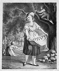 Egloffstein, Julie von: Die schöne Gärtnerin