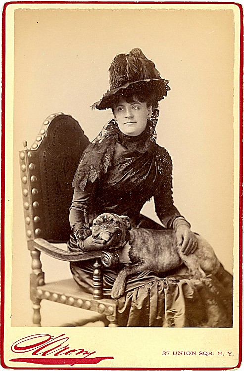 Dogs on laps. 4 cabinet cards.