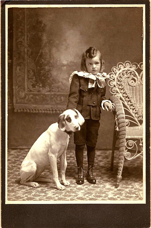 Large dogs. 3 cabinet cards.