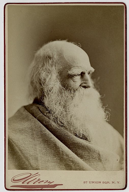 William Cullen Bryant by Sarony.