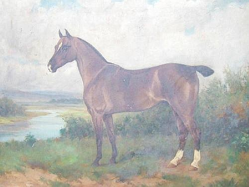 Wright Barker (1864 - 1941), A bay horse in a landscape, oil on canvas, signed, 45 cm x 60 cm. Illustrated.
