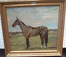 Nina Colmore (1889-1973), A bay horse in a