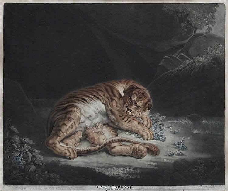 NICOLAS RHEIN (1767-1819) naar / d'après Rubens - Mezzotint. Signed and dated under the print in the plate. Framed.