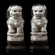 Pair of seated Foo dogs with ball. Carved ivory. Chinese work. On wooden stands.