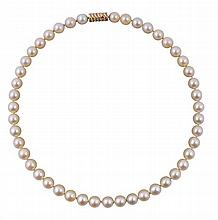 Collier de perles de culture type Choker, fermoir trois or 14 k