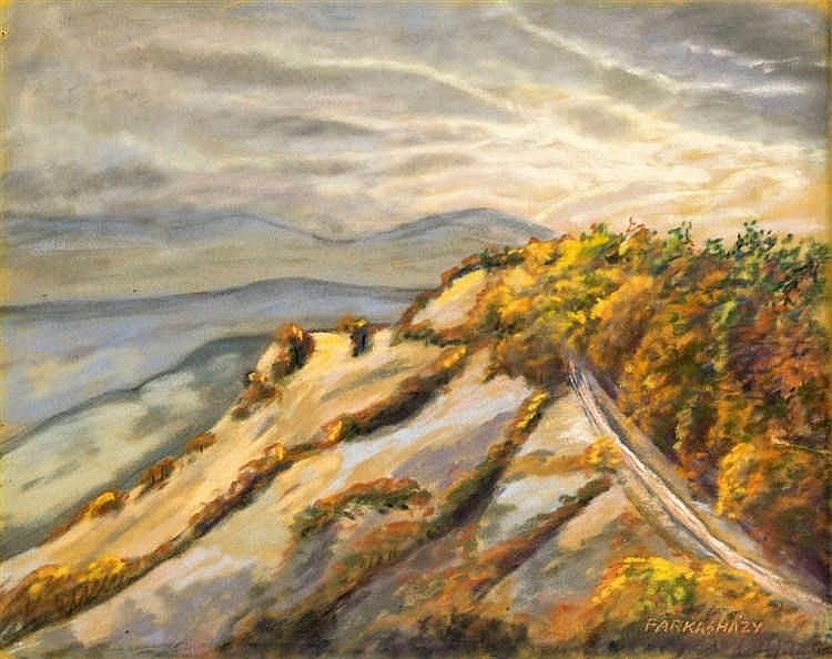 Balaton hillside
