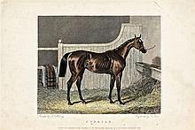Richard Parr, 19th century  - Cyprian