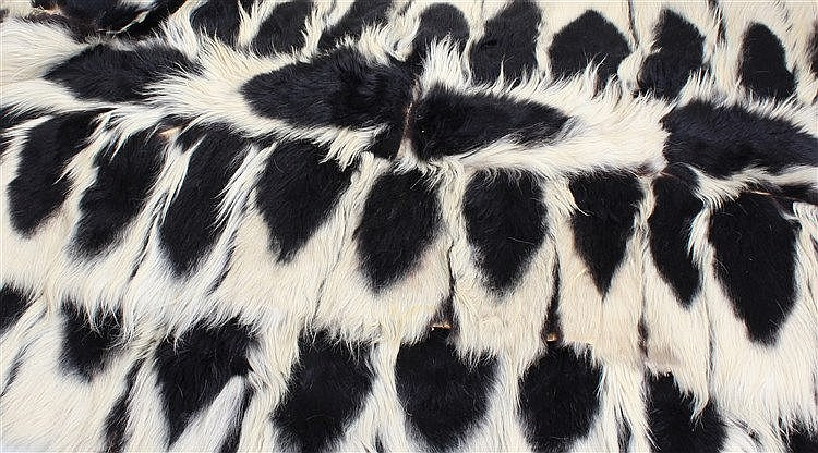 Two colobus monkey rugs, with white and black fur, (2)